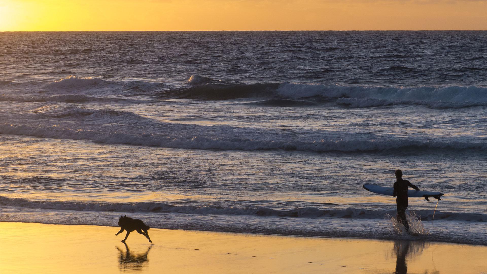 Surfen im Herbst und Winter auf Fuerteventura.