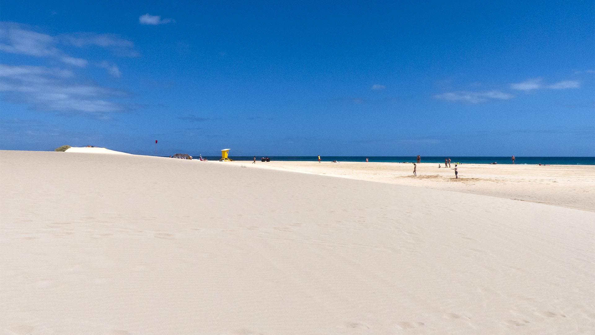 El Jable nahe Corralejo Fuerteventura – Playa de Los Matos Fuerteventura.