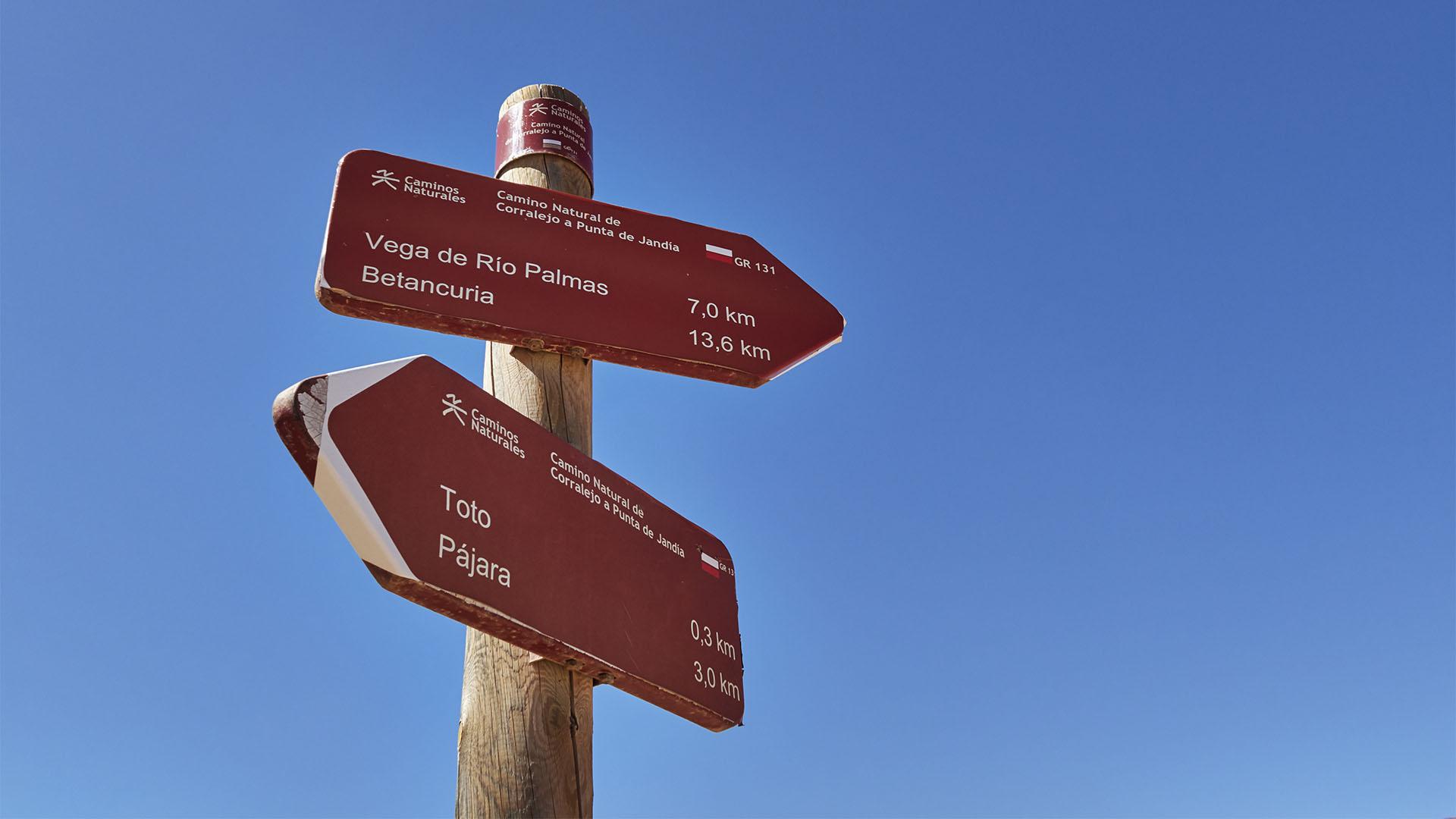 Wanderung von Toto über den Mirador los Granadillos auf den Morro de los Olivos und den Filo de Fendúca.