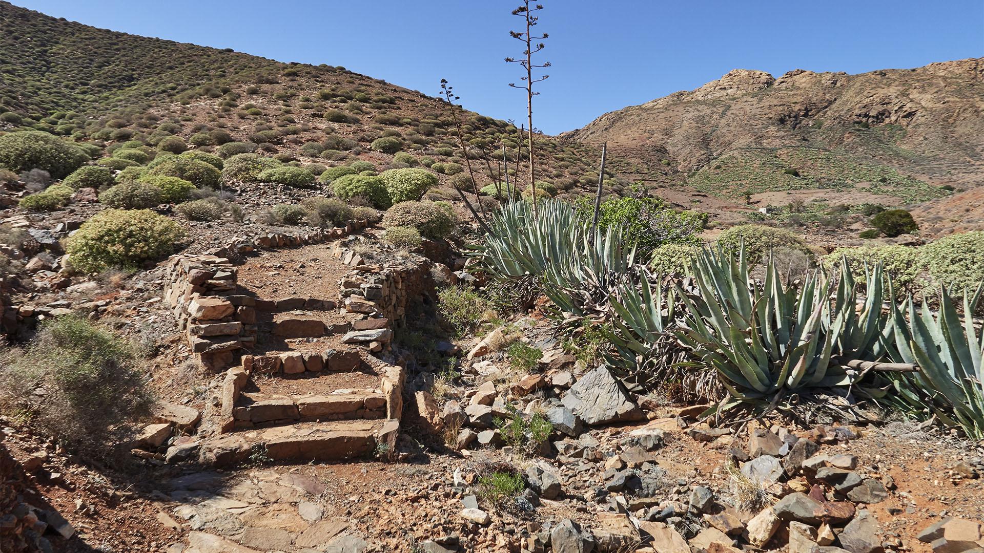 Wandern nahe Pájara im Zentralmassiv von Fuerteventura.