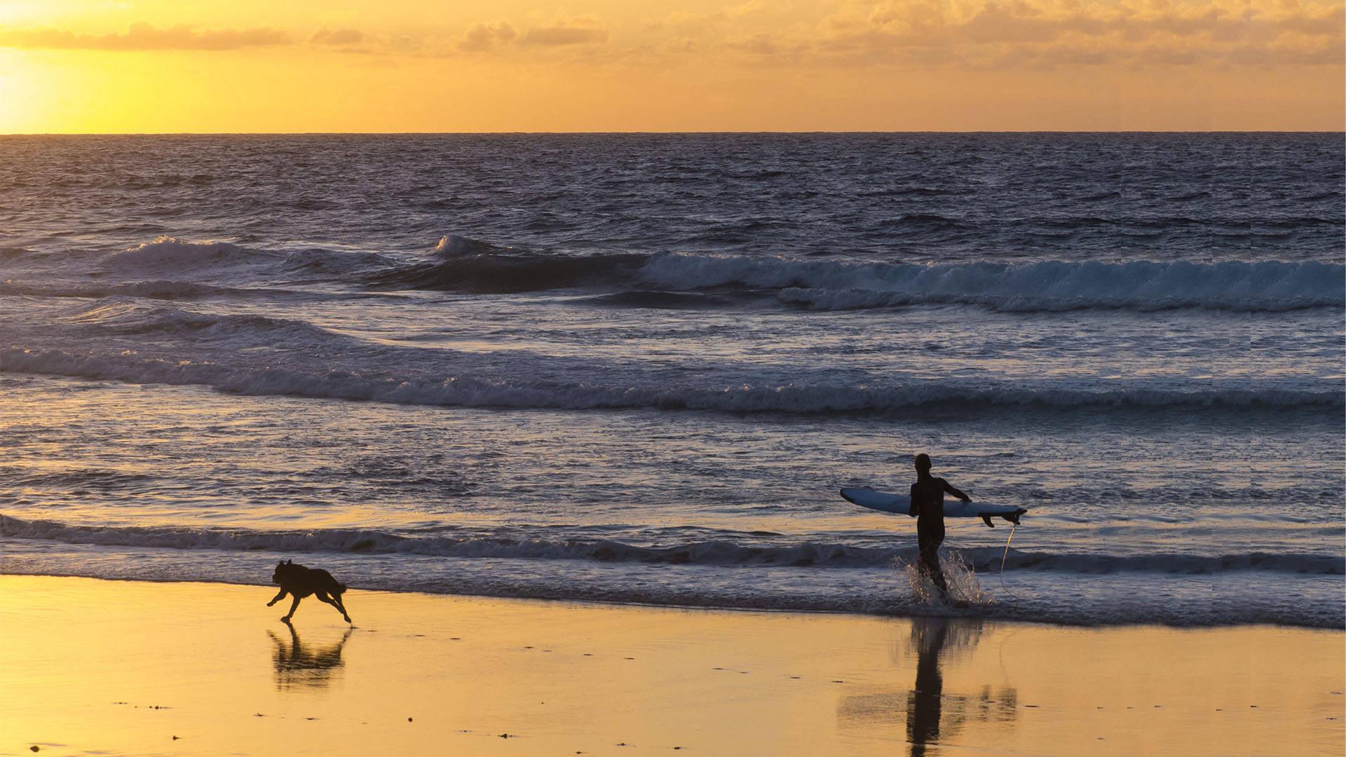 Sunset Surfen auf Fuerteventura –eines vom Schönsten.
