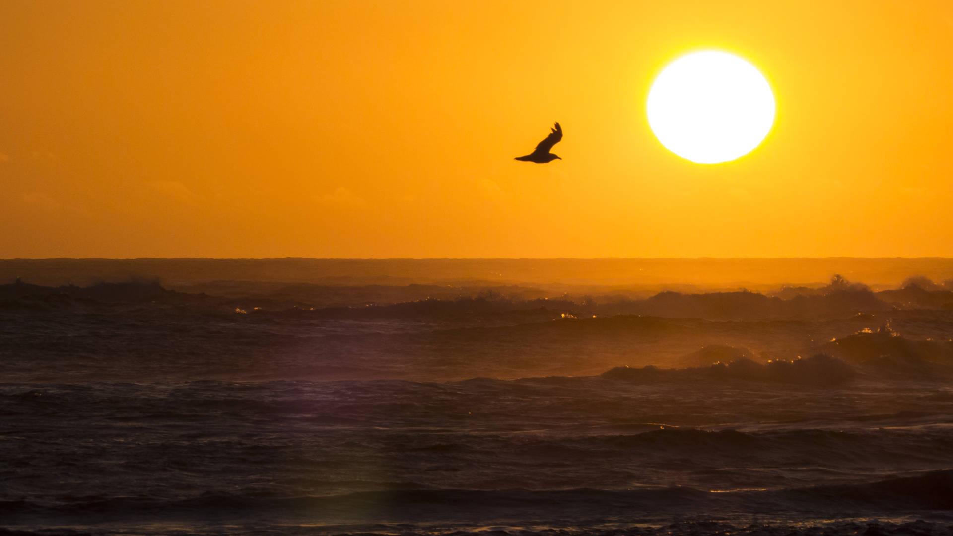 Ein Gefühl von Freiheit –der weite Atlantik und die sinkende Sonne.